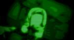 GitS-heatvision-05